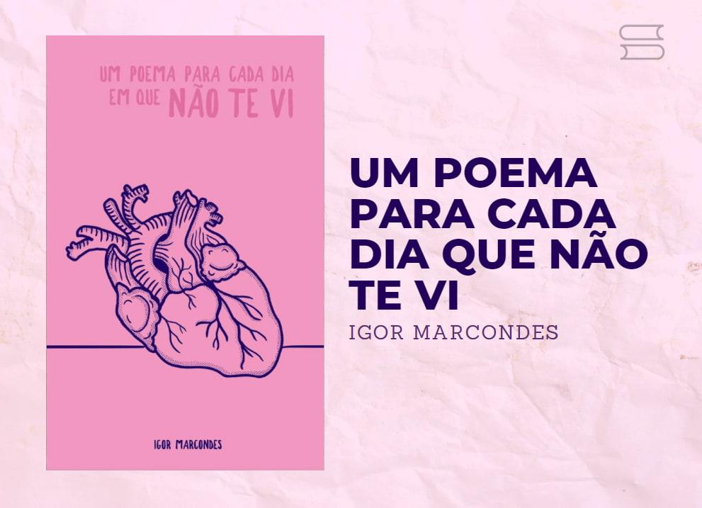 livro um poema para cada dia que nao te vi