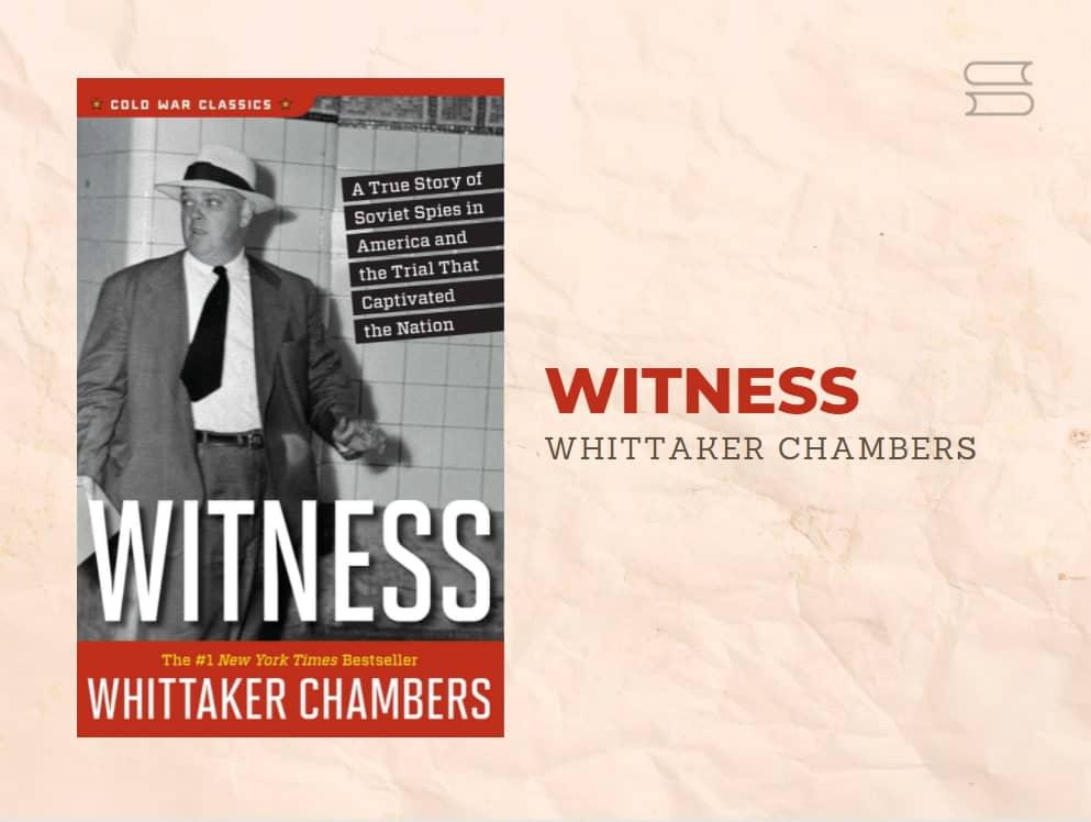 livro witness